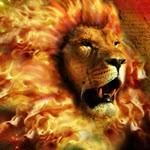 Прибыльная форекс стратегия Trend Lion