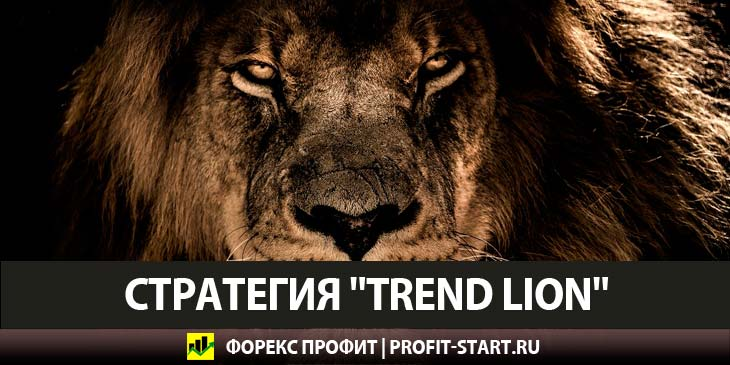 Форекс Стратегия Trend Lion